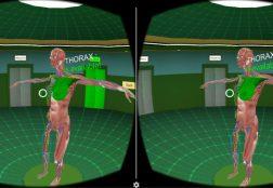 Anatomy VR